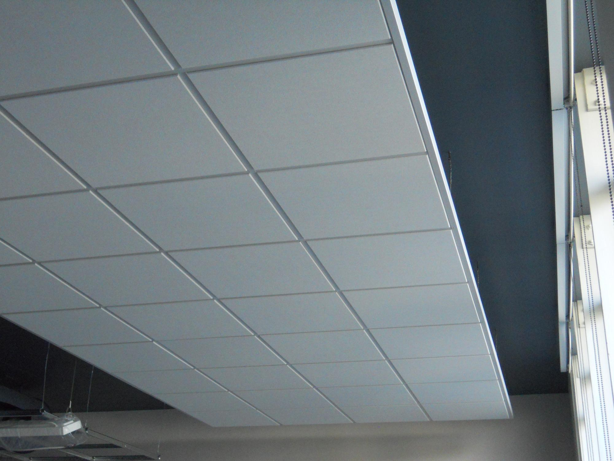 Acoustical ceiling products commercial suspended ceilings doublecrazyfo Gallery